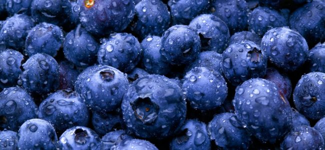 blueberry superfood tips by west island Spa Munari